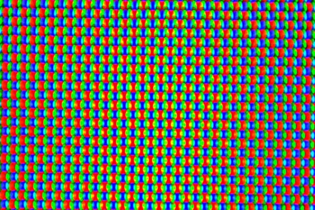 OLED-Panel mit RGBG-Matrix (Bild: Tobias Költzsch/Golem.de)