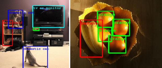 Googles neue Bilderkennung kann recht genau verschiedene Objekte unterscheiden und lokalisieren. (Bild: Google)