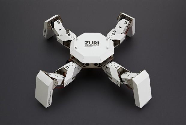 Kleiner Roboter mit 3 Freiheitsgraden pro Bein(Foto: Zoobotics/Carsten Dammann)