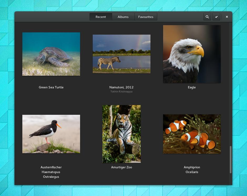 Linux-Desktop: Gnome 3.14 erhält Multitouch-Funktionen - Die Fotoverwaltung greift jetzt direkt auf Inhalte bei Google zu.