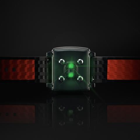Unterseite der Peak-Smartwatch (Bild: Basis)