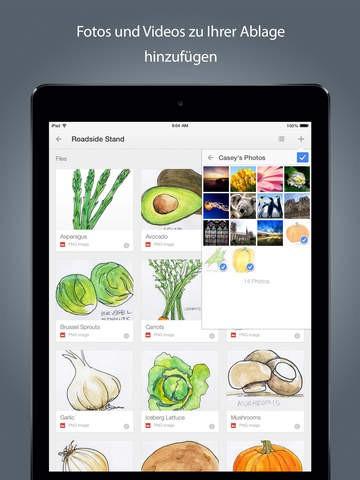 Google Drive 3.3 auf dem iPad (Bild: Apple)
