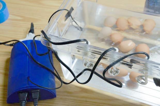 Das fertige Sous-Vide-Gerät beim Eierkochen