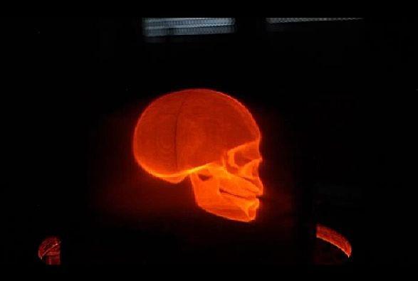 3D-Bild eines Schädels, dargestellt vom aktuellen Modell des Bollographen (Soscho/Screenshot: Golem.de)