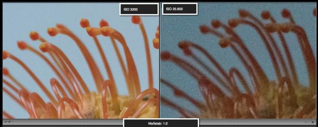 Unser Detailvergleich mit vergrößerten Bildausschnitten (1:2) zeigt, dass das CM1 bei wenig Licht noch sehr gute Bilder macht. (Foto: Petra Vogt)