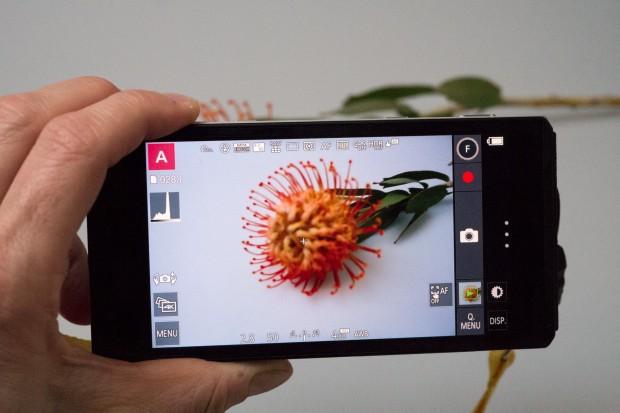 Die Einstellungsmöglichkeiten der Kamera-App entsprechen denen einer leistungsfähigen Kamera. (Foto: Petra Vogt)
