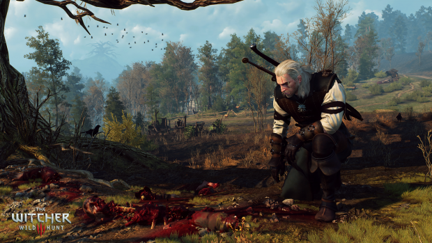 The Witcher 3 (Bild: CD Projekt Red)