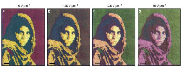 Jedes der vier Bilder des afghanischen Mädchens ist das Resultat unterschiedlicher elektrischer Feldstärken. (Bild: University of Central Florida)