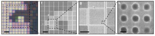 Nahaufnahmen der plasmonischen Nanostruktur mit unterschiedlichem Vergrößerungsfaktor: (e) 20 mm, (f) 10 mm, (g) 5 mm, (h) 150 nm