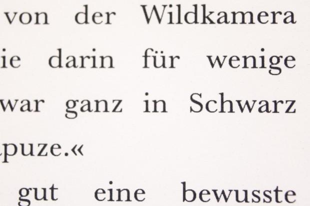 Das Schriftbild des Kindle Voyage (Bild: Martin Wolf/Golem.de)