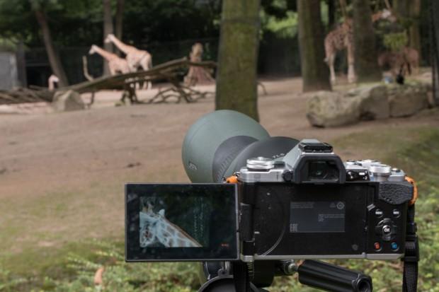 Das Spektiv holt die Tiere nahe heran. (Foto: Werner Pluta/Golem.de)