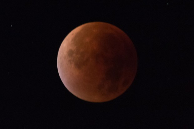 Blutmond: Am frühen Morgen des 28. September 2015 gab es eine totale Mondfinsternis. (Foto: Werner Pluta/Golem.de)