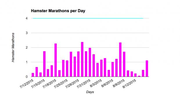 Die Roborowskis legen regelmäßig mehr als zwei Hamstermarathons pro Tag zurück. (Diagramm: Michelle Leonhart)