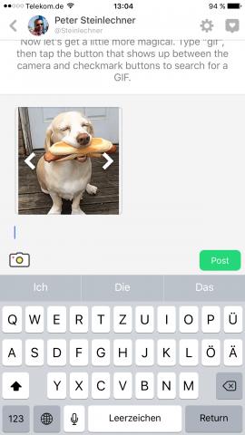 Mit einem Touch lässt sich ein Gif deses lustigen Hundes veröffentlichen. (Screenshot: Golem.de)