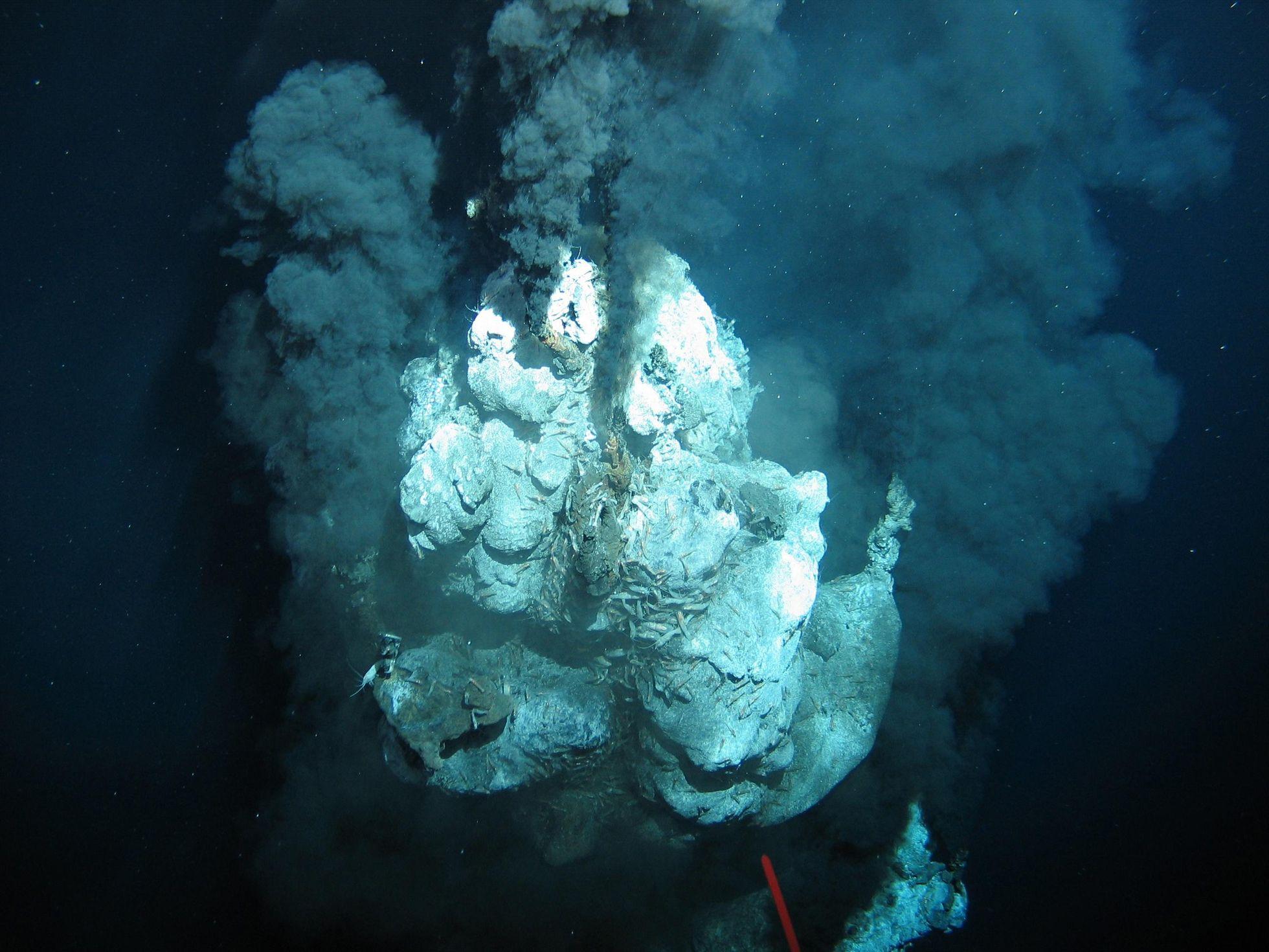 Deep Sea Mining: In der Tiefsee liegt die Zukunft der Technik -