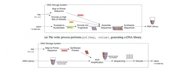 Schreib- und Lese-Prozess der DNA (Bild: Microsoft Research)