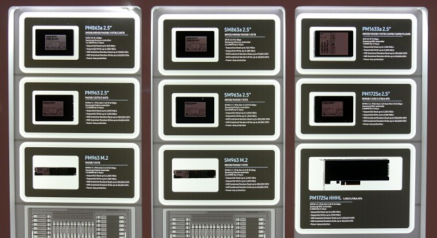 Varianten der PM963 und SM963 (Foto: Marc Sauter/Golem.de)