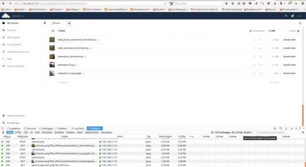 Unsere Messungen erfolgten in den Entwicklerwerkzeugen von Firefox. (Screenshots: Golem.de)