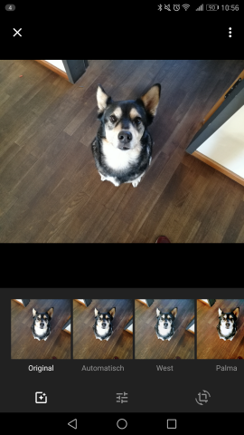 Im Begrüßungsbildschirm der Fotos-App können Nutzer das Bild automatisch bearbeiten lassen oder Filter auswählen. (Screenshot: Golem.de)