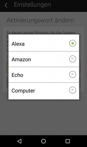 Mit einem dieser vier Signalwörter wird Alexa aktiviert, Computer kam später dazu. Eigene Signalwörter sind nicht möglich. (Screenshot: Golem.de)