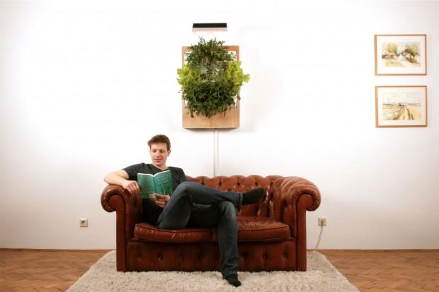 Herbert ist ein vertikales Gemüsebeet für die Wand. (Foto: Ponix)