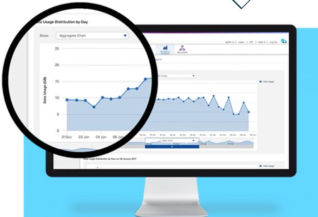 Das Dashboard zeigt die Datennutzung in einem Zeitraum an. (Screenshot: Cisco)
