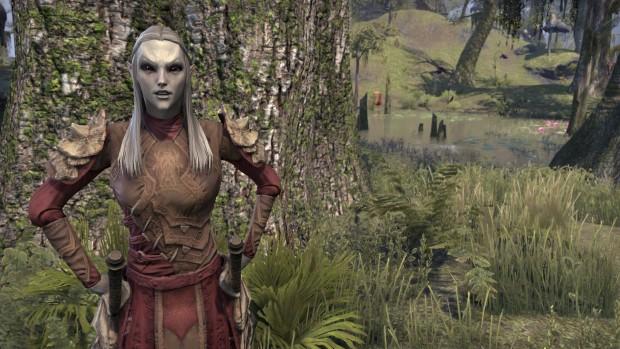 Impressionen aus TESO Morrowind (Bild: Bethesda/Screenshot: Golem.de)