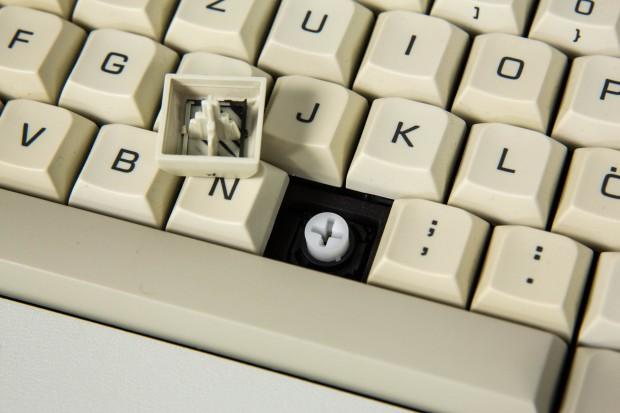 Das LC Board hat Futaba White Switches, taktile mechanische Schalter mit charakteristisch dumpfem Klang. (Bild: Martin Wolf/Golem.de)