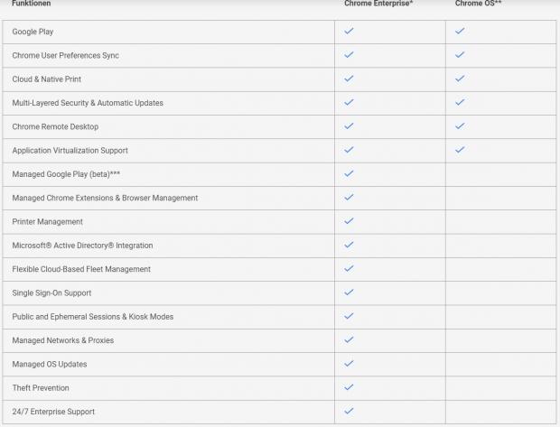 Chrome Enterprise bietet viele wichtige Funktionen für Unternehmen. (Grafik: Google)