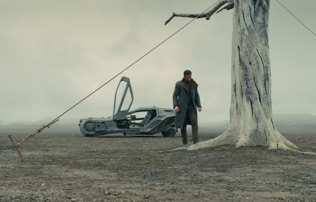 K macht eine Entdeckung, die seine Reise für den Rest des Films bestimmen wird. (Bild: Sony Pictures)