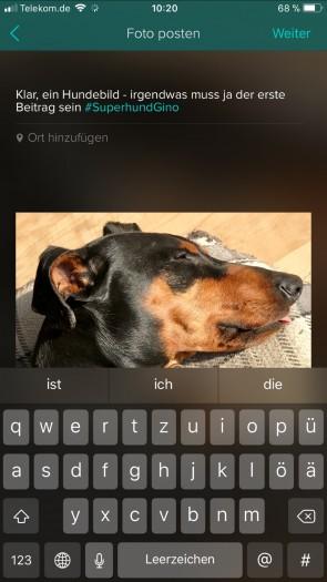 In Beiträgen lassen sich wie auf Twitter auch Hashtags verwenden. (Bild: Vero/Screenshot: Golem.de)