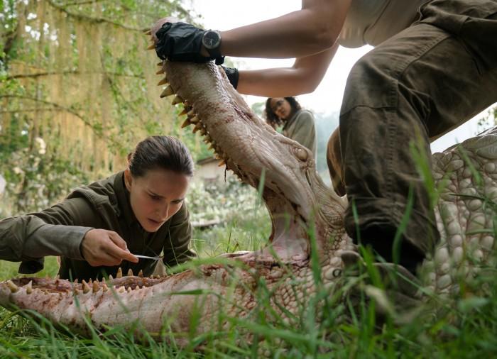 Vermischte DNA: Alligatormund tut Haifischzahn kund. (Bild: Netflix)