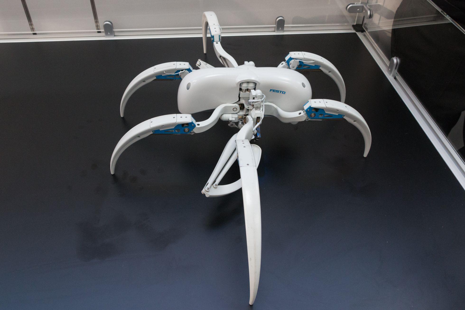 Bionic Wheel Bot: Festos Spinnenroboter rollt und läuft - Der Bionic Wheel Bot ist ein bionischer Roboter, der einer Spinne nachempfunden ist.  (Bild: Werner Pluta/Golem.de)