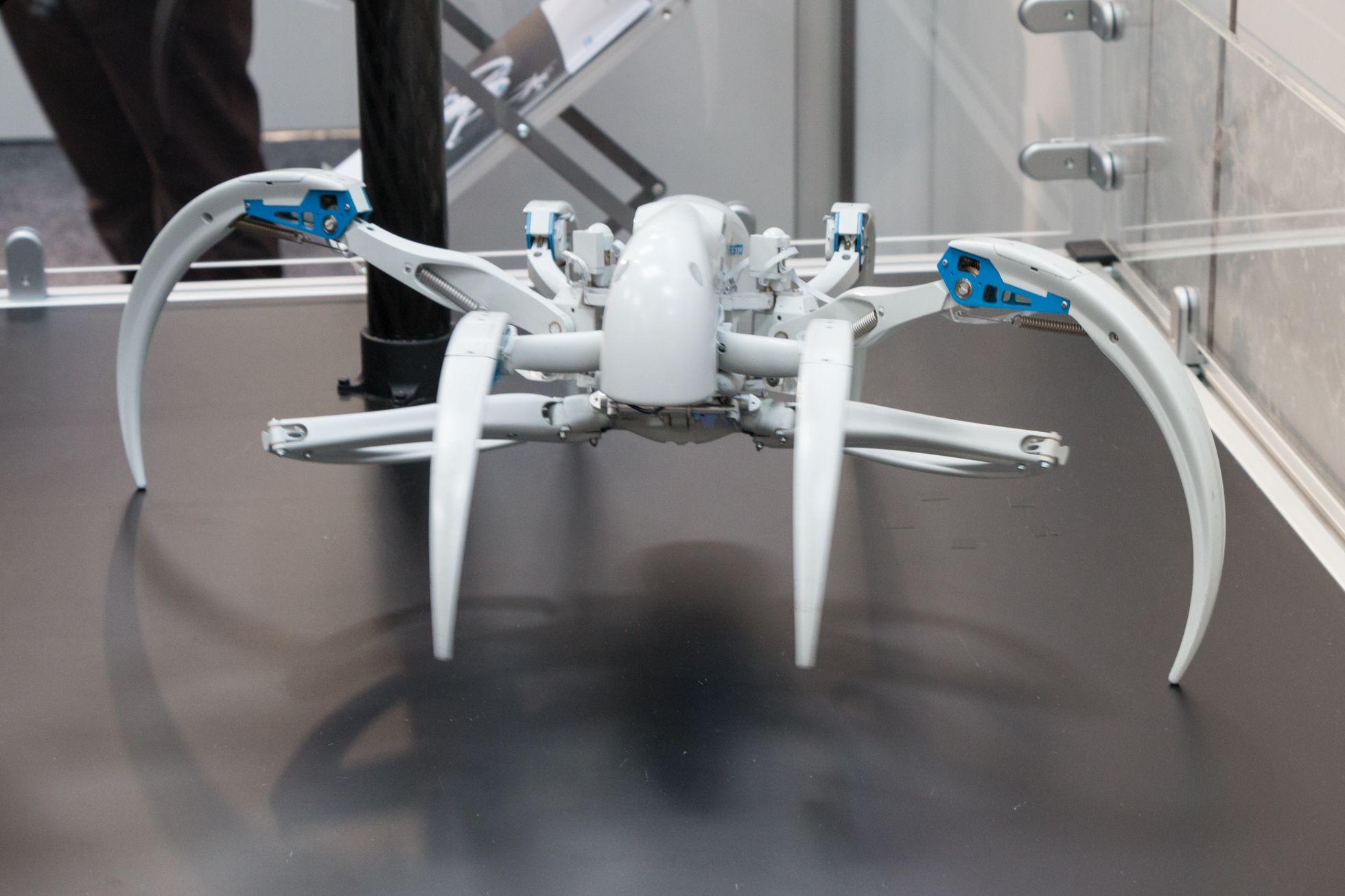 Bionic Wheel Bot: Festos Spinnenroboter rollt und läuft - Er kann laufen... (Bild: Werner Pluta/Golem.de)