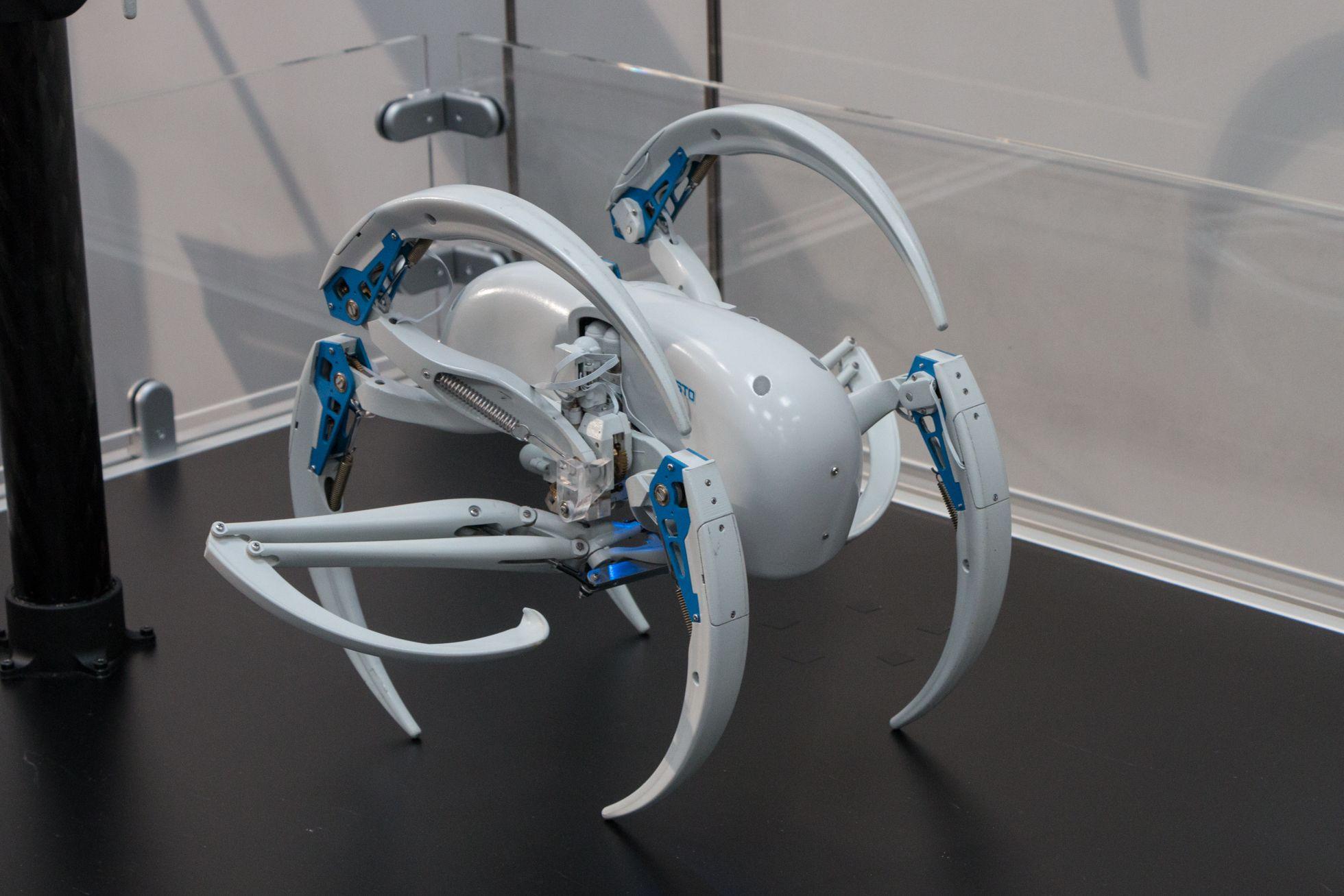 Bionic Wheel Bot: Festos Spinnenroboter rollt und läuft - ... und rollen. (Bild: Werner Pluta/Golem.de)