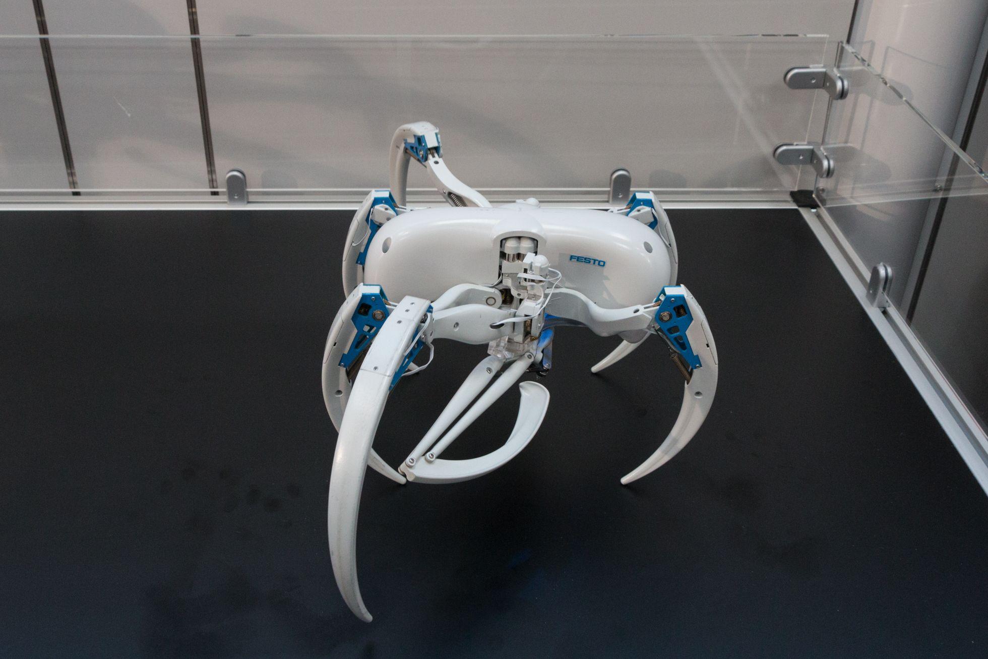 Bionic Wheel Bot: Festos Spinnenroboter rollt und läuft - Zum Laufen braucht der Roboter nur sechs Beine. (Bild: Werner Pluta/Golem.de)