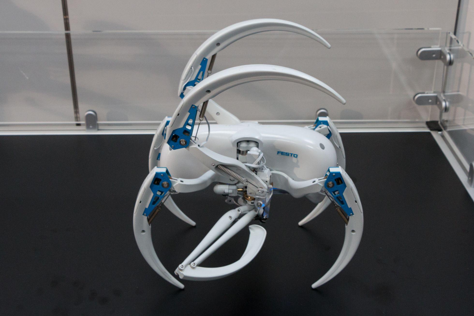 Bionic Wheel Bot: Festos Spinnenroboter rollt und läuft - Zum Rollen transformiert sich der Roboter. (Bild: Werner Pluta/Golem.de)