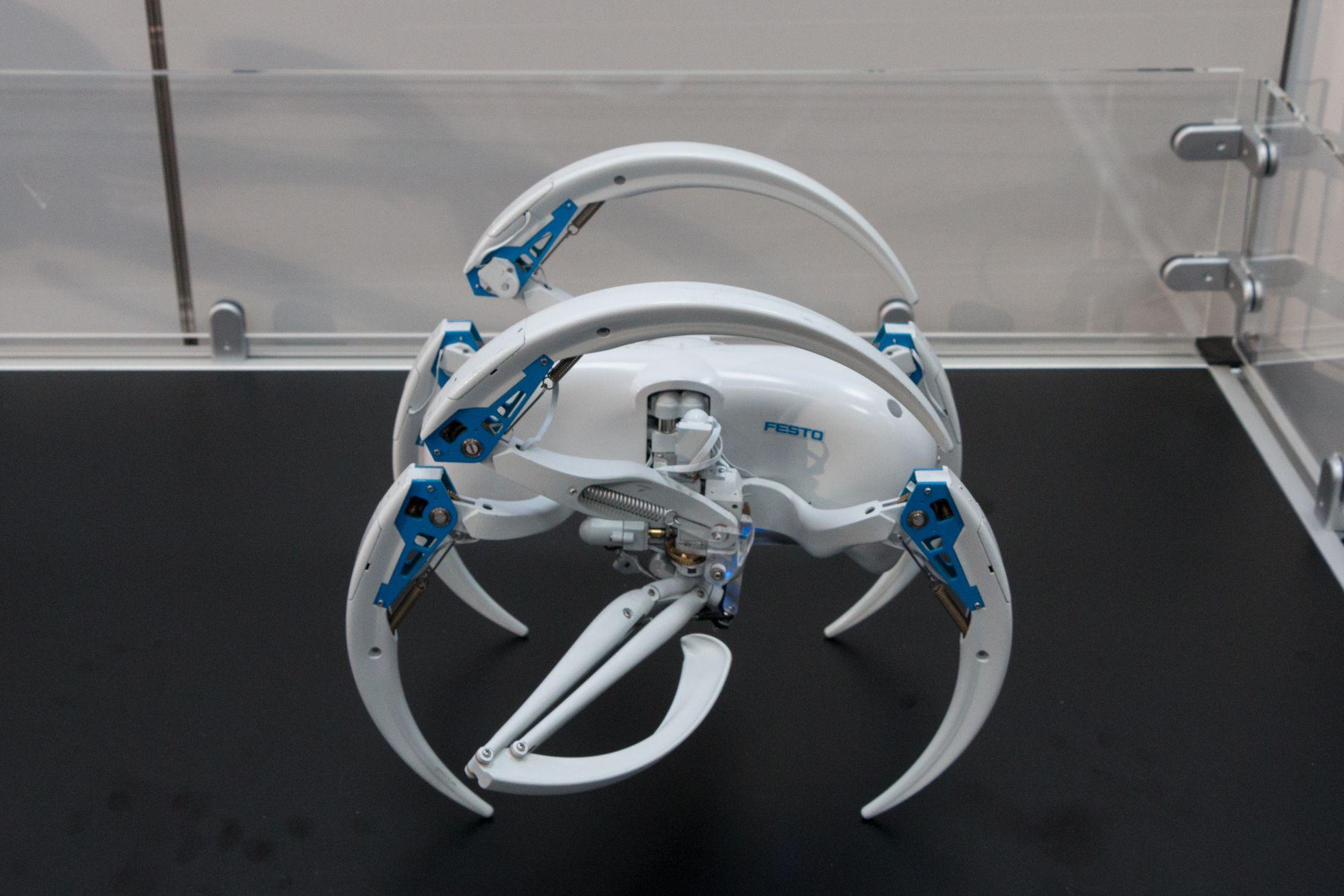 Bionic Wheel Bot: Festos Spinnenroboter rollt und läuft -