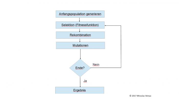 Funktionsweise des genetischen Algorithmus' (Bild: Miroslav Stimac)