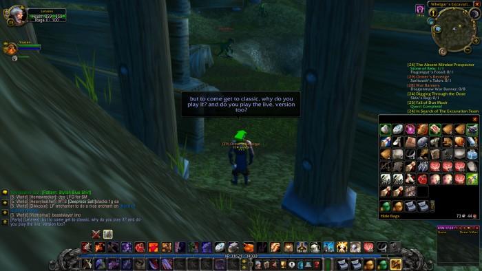Unterwegs in geheimer Mission: Golem.de plauderte ingame mit Spielern des Classic-Privatservers Elysium. (Bild: Blizzard/Screenshot: Golem.de)