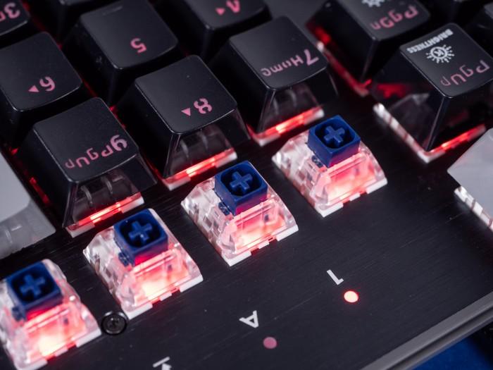 Die in unserer Testtastatur verbauten Box-Schalter (Bild: Martin Wolf/Golem.de)