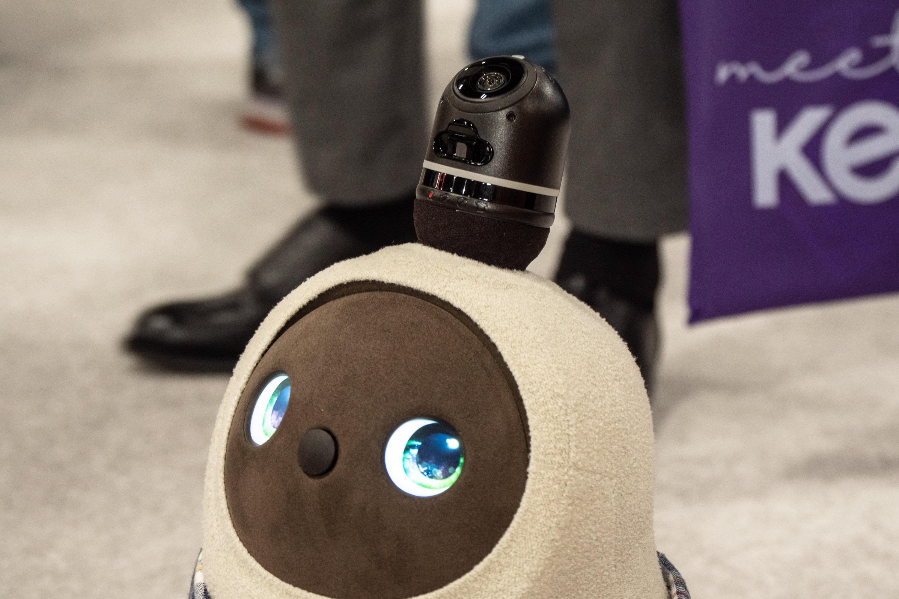 Lovot im Hands-on: Knuddeliger geht ein Roboter kaum -