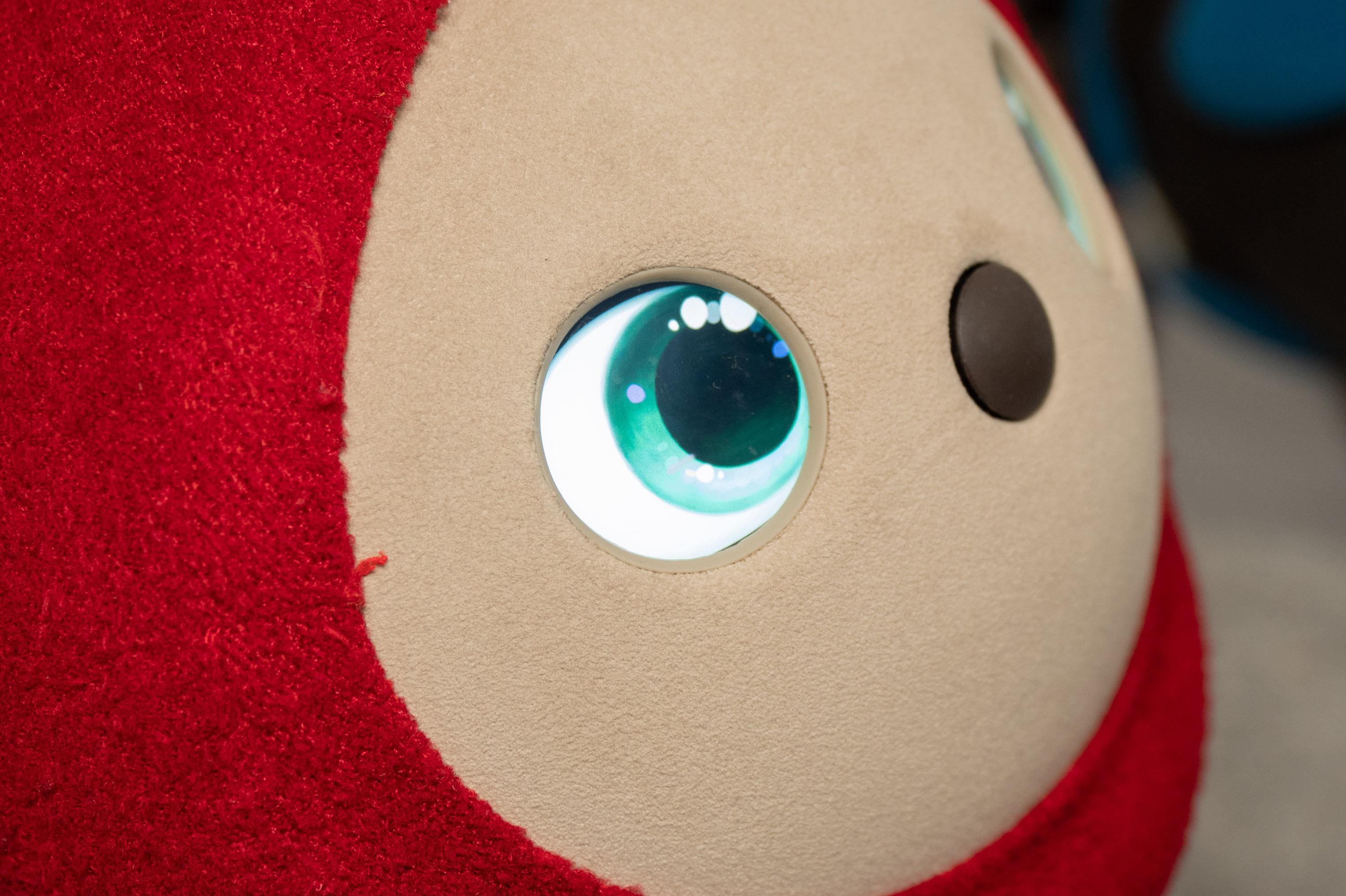 Lovot im Hands-on: Knuddeliger geht ein Roboter kaum - Die Augen von Lovot sind Displays. (Bild: Martin Wolf/Golem.de)