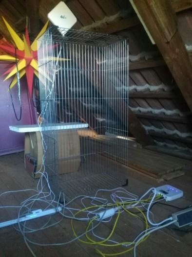 Der Netzwerkausbau steht unter einem guten Stern. Hier erste Versuche mit LTE (Bild: Sebastian Grüner)