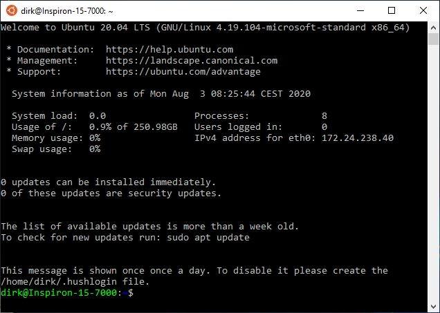 Beim Start von Ubuntu werden hilfreiche Informationen ausgegeben. (Screenshot: Dirk Koller)