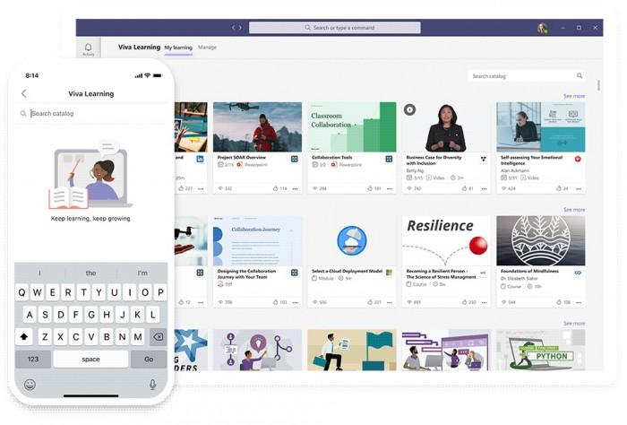 Microsoft Viva Learnings bietet und verwaltet Schulungen.