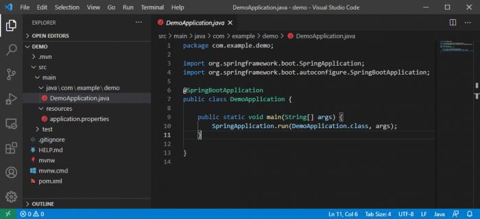 Das generierte Projekt in Visual Studio Code (Screenshot: Dirk Koller)